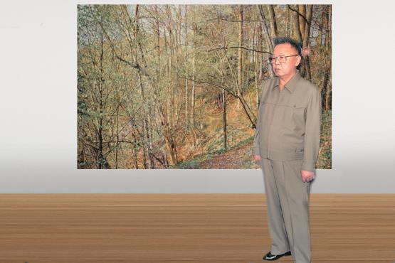 Kim Jong Il looking at Bundesrat