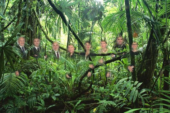 Im Dschungelcamp (Montage: Peter Dietz)