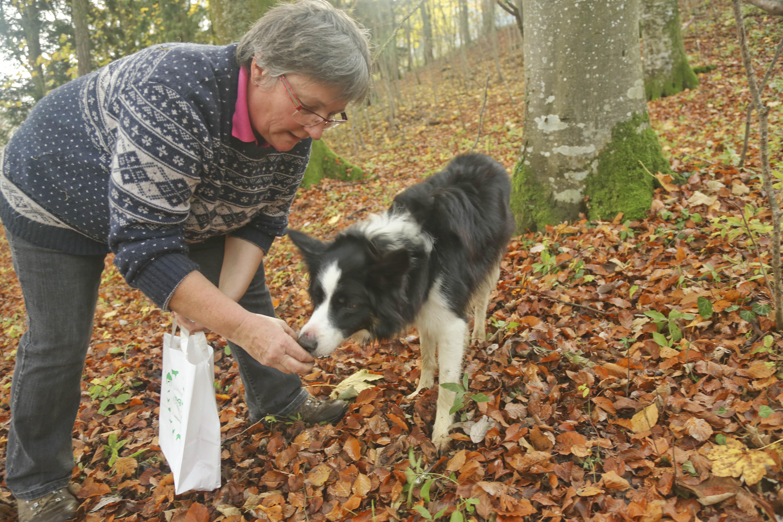 «Die Ausbildung war unkompliziert»: Kathrin Bitterlin brachte ihrem Hund Titus das Trüffeln selber bei.