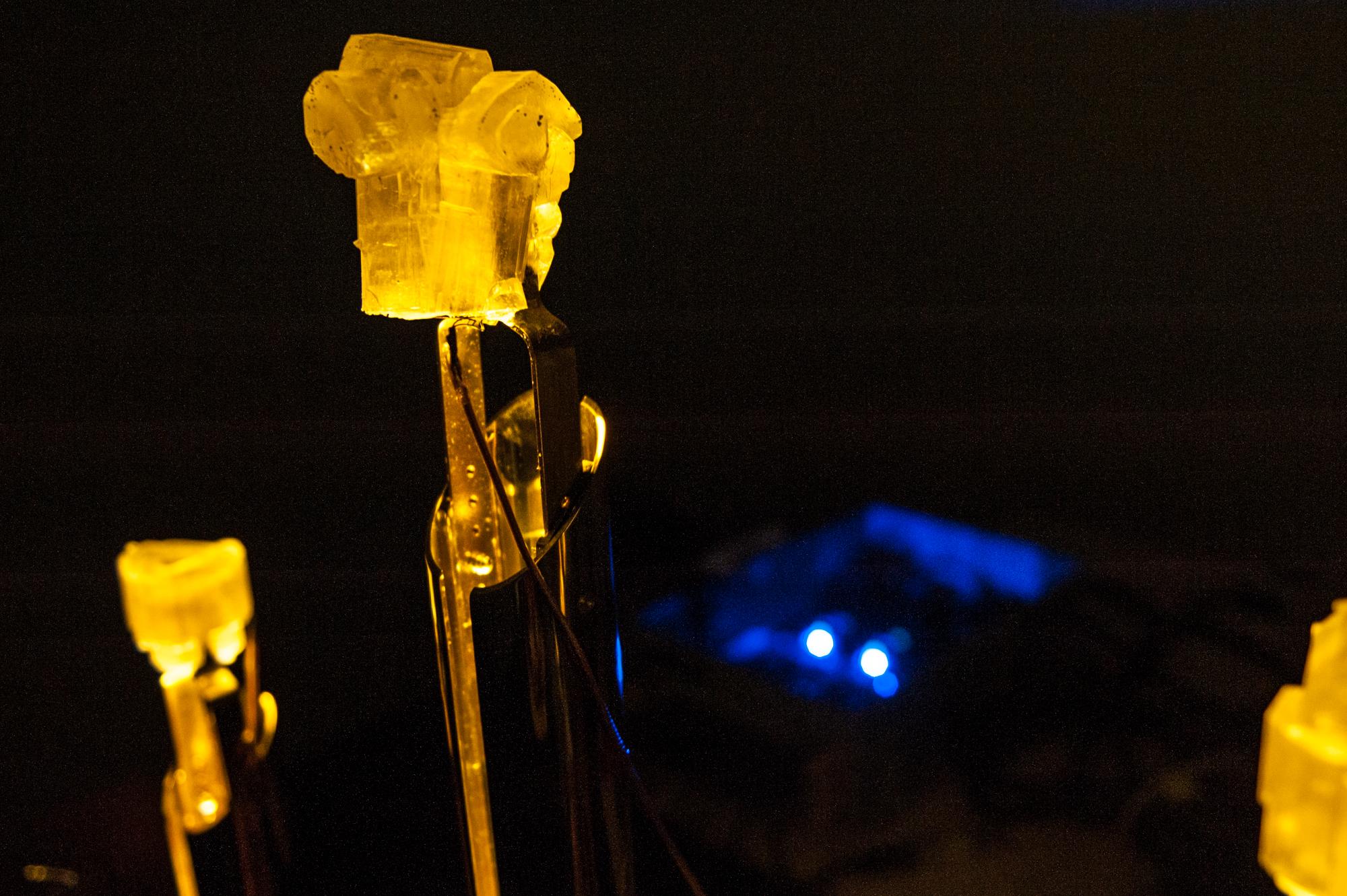 Laura Couto Rosado und Dan Lagardère bringen selbst gemachte Quartz-Kristalle zum «Singen».
