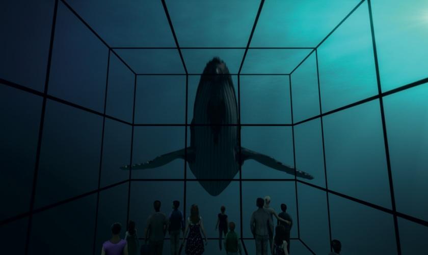 Hier könnte auch ein anderes Tier schwimmen: Im virtuellen Raum nur eine Frage des Programms.