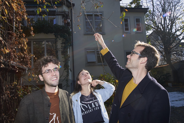 Ausstellungsmacher mit sonnigem Gemüt: Künstler Raphael Stucky, Lysann König und Chris Hunter im Garten hinter der Villa Renata.