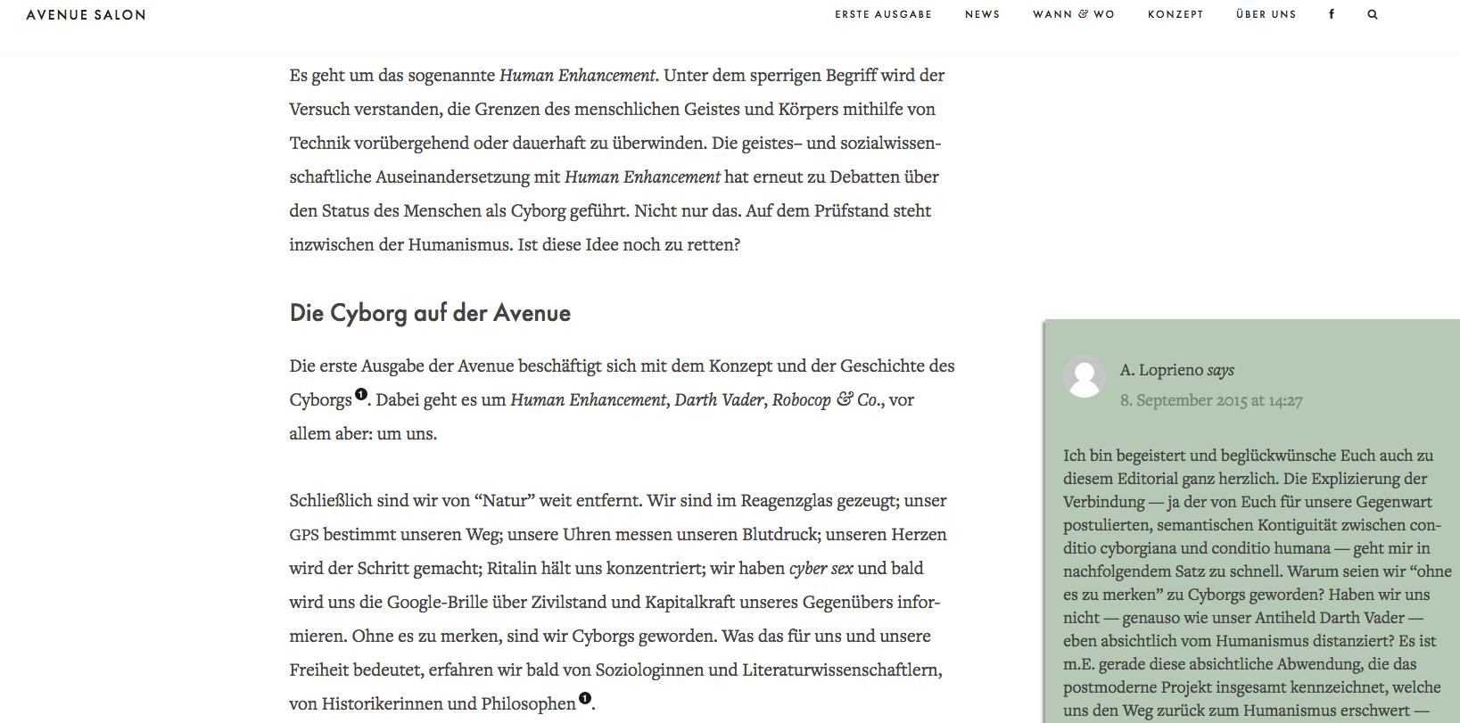 Einladung zum Dialog: Die Direkt-Kommentarfunktion auf der «Avenue»-Webseite (Screenshot).