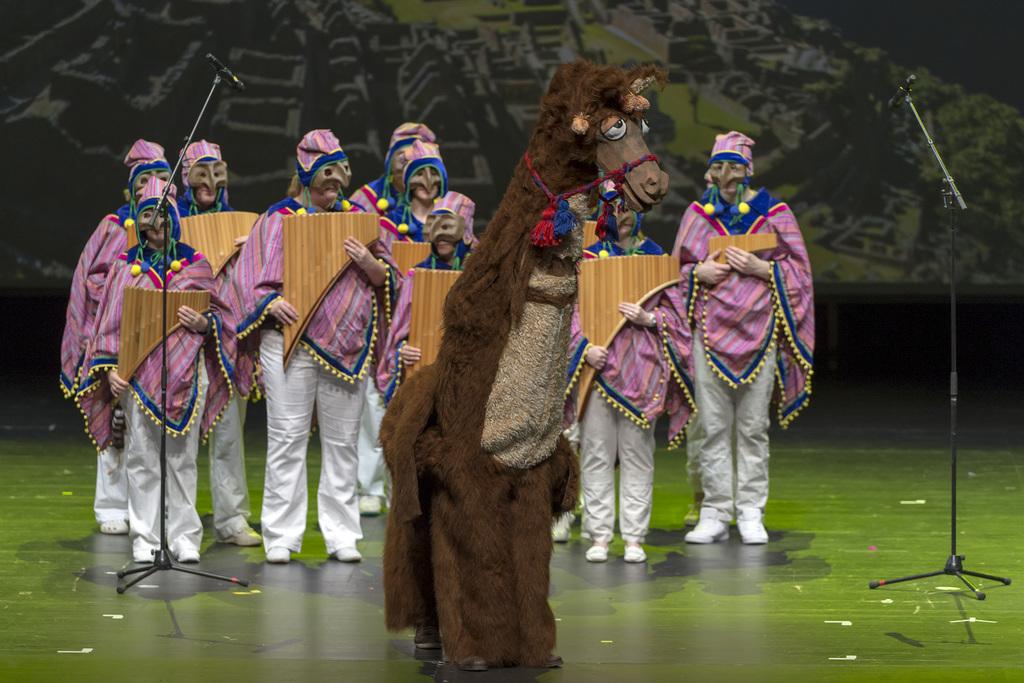 Ein betrunkenes Alpaka als Tambourmajor: Die Rootsheere-Clique nimmt die Fasnacht in die Anden.