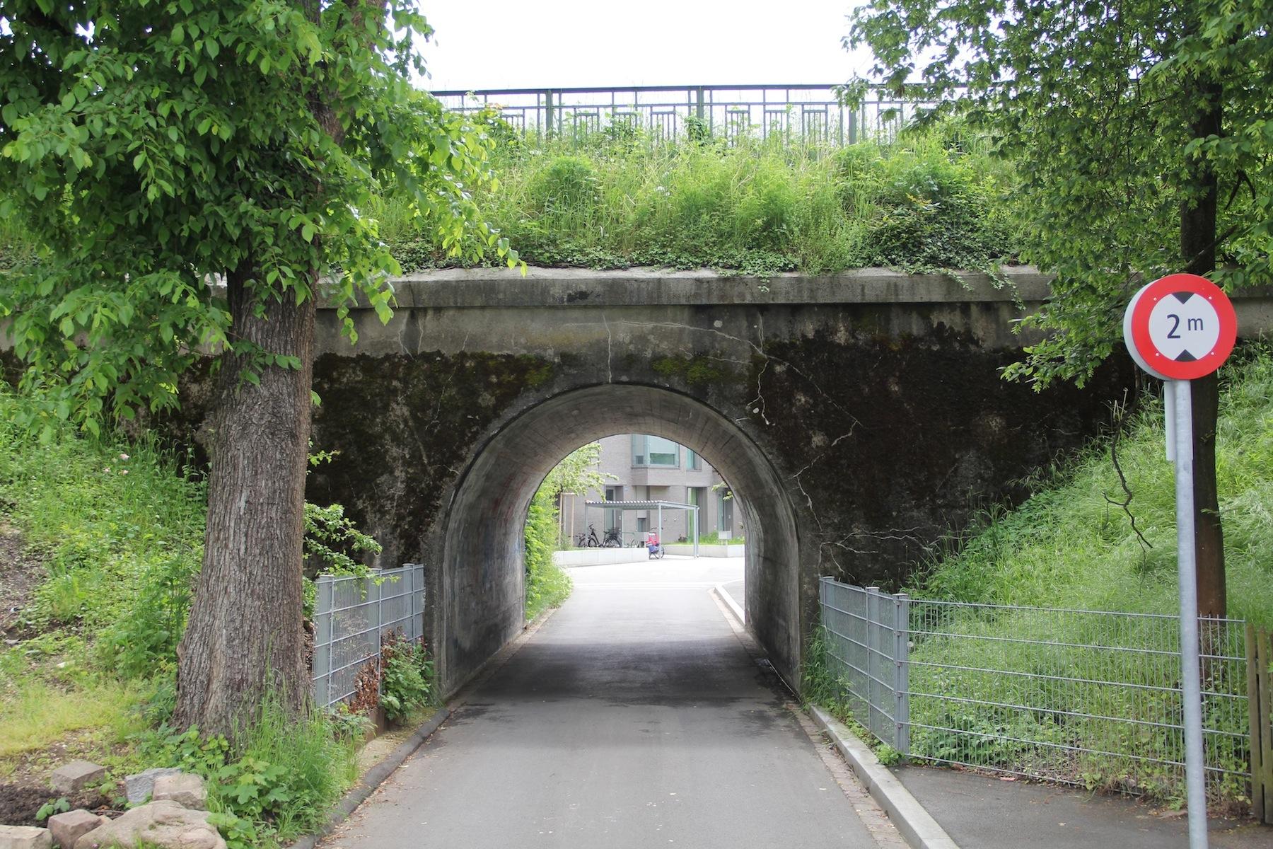 Verwildert, doch vor Verwaldung geschützt: Die Bahndämme der DB prägen das Stadtbild im Hirzbrunnen-Quartier - vor allem im Gebiet Schorenmatten/Im Surinam.