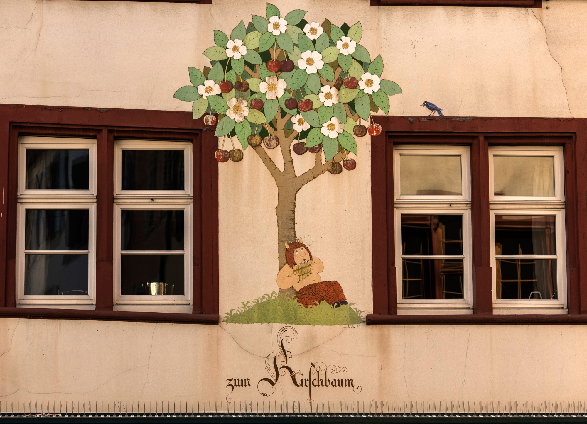 Bevor die Häuser nummeriert wurden orientierten sich die Leute am Spalenberg am weltweit einzigen Kirschbaum der zugleich blüht und Früchte trägt.