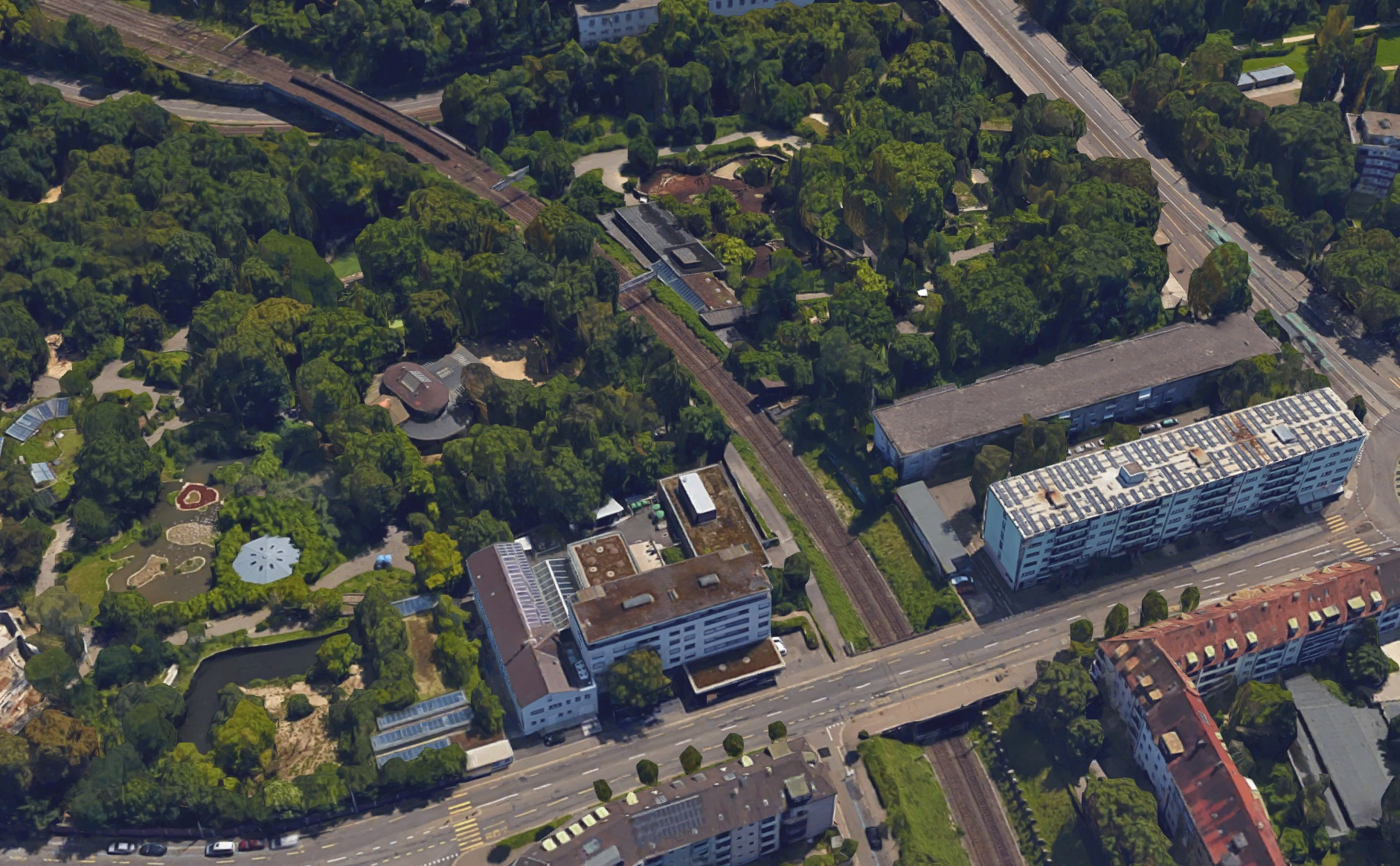 Streitpunkt Zollibrücke: Der Velo- und Fussgängersteg würde entlang der Bahnlinie führen, die den Zolli heute schon durchschneidet.