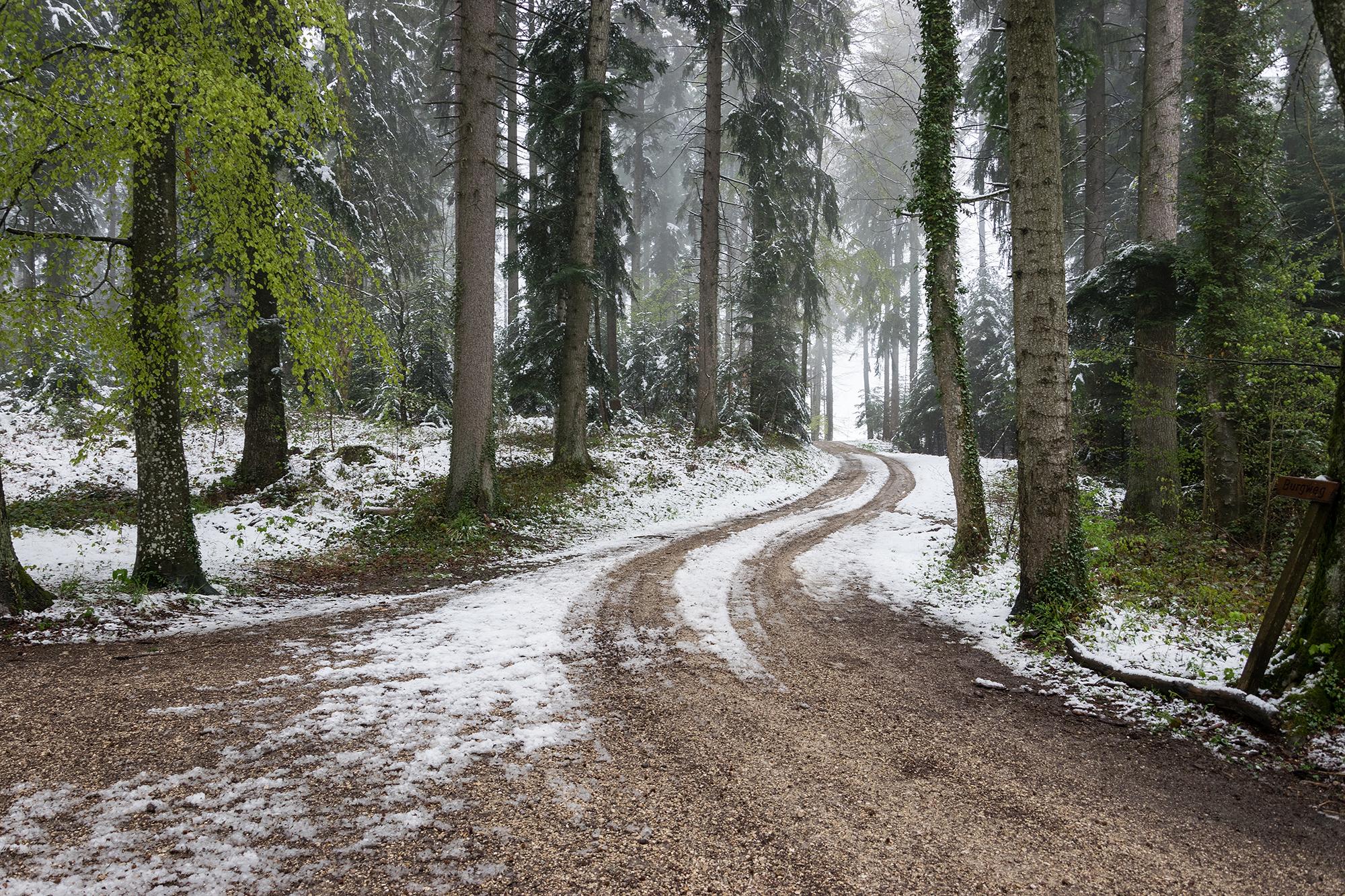 Der Weg ist mit Schnee bedeckt.