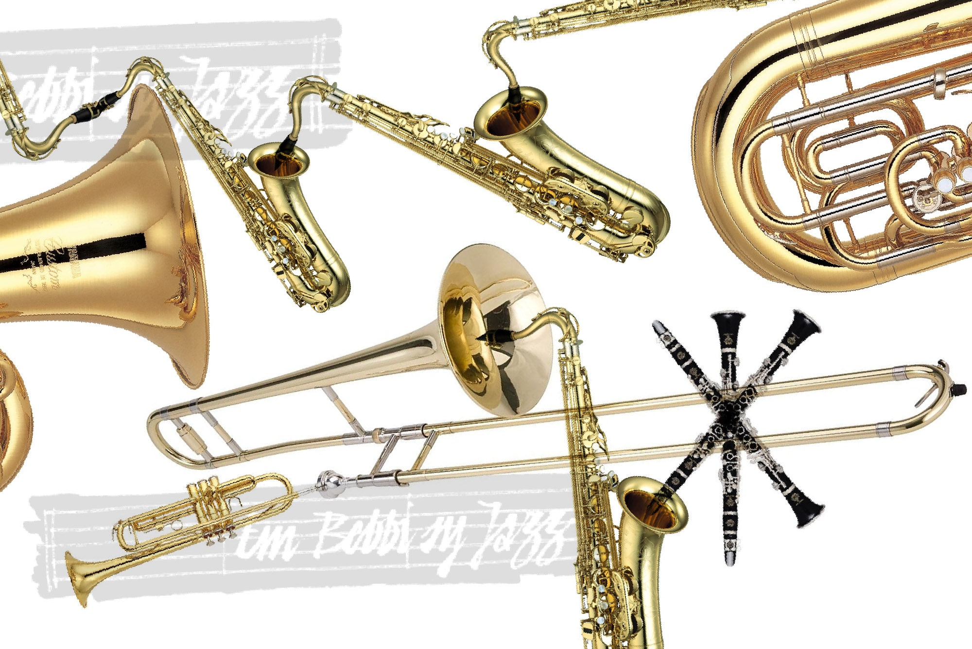 Dieses Jahr steht der Latin Jazz im Vordergrund.