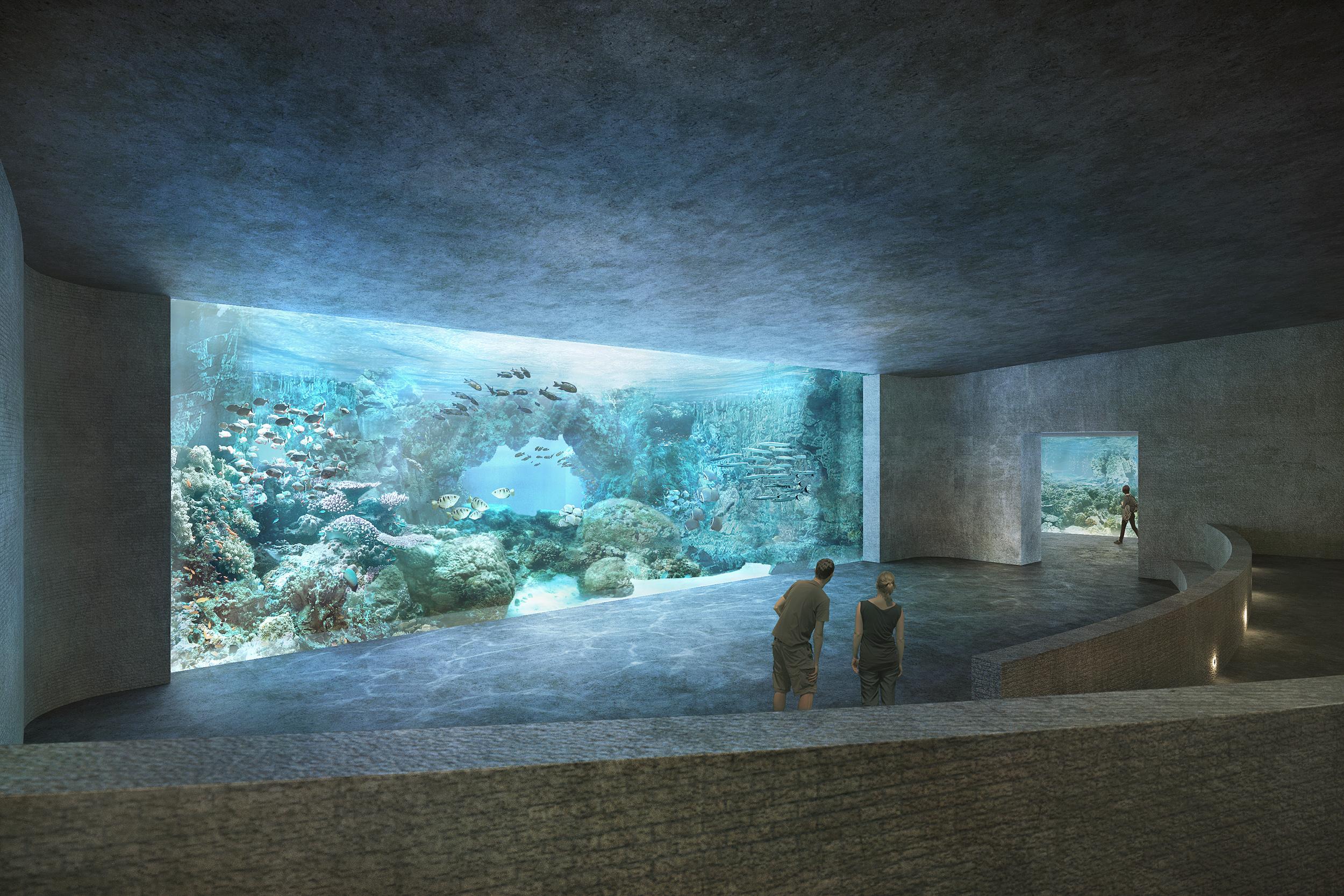 Die Eröffnung des Ozeaniums ist frühestens für das Jahr 2024 geplant.