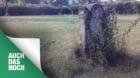 Auch das noch: Die Basler Jury fand nur ein schönes Grab auf dem Hörnli.