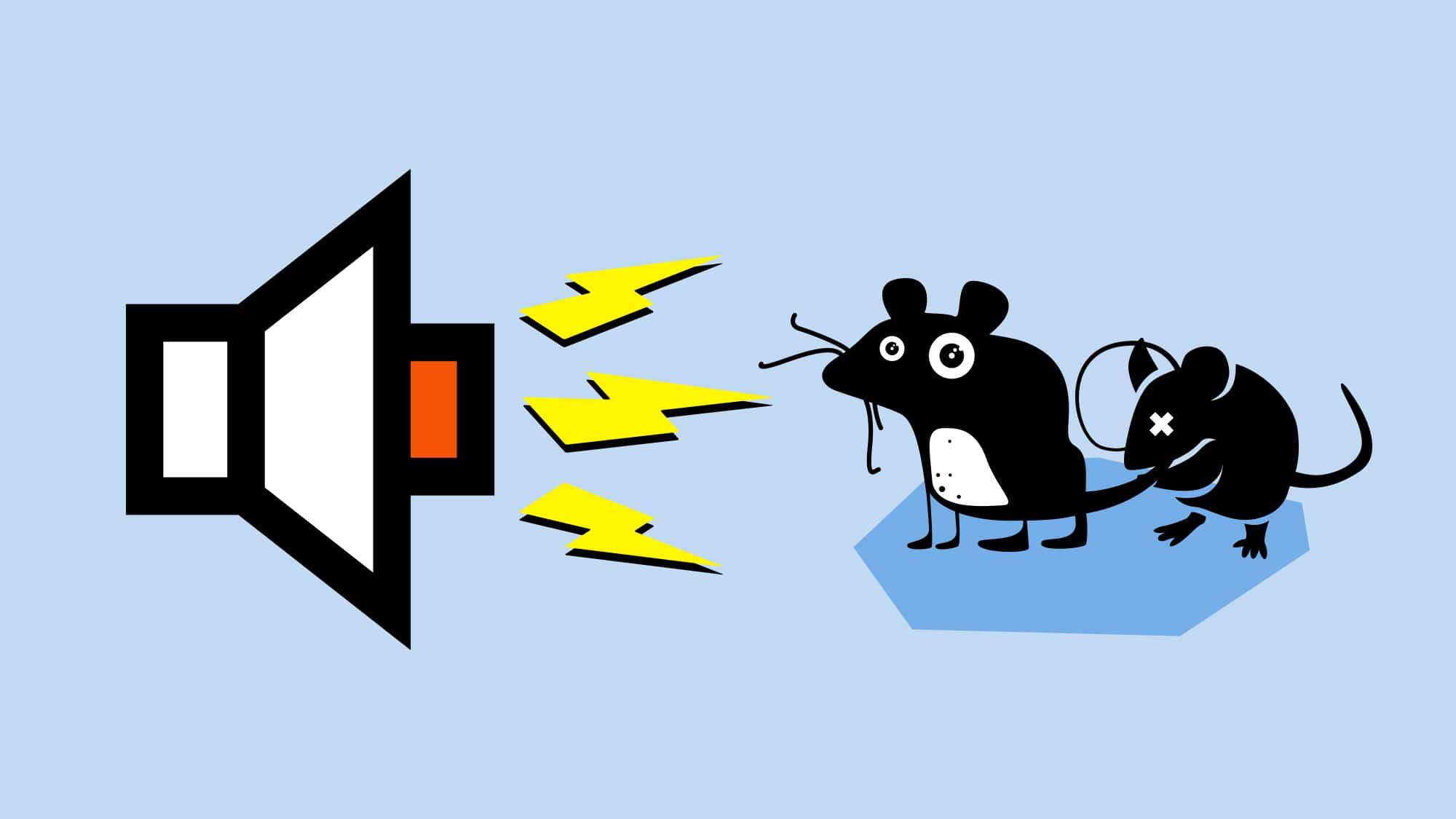 Der Marktkauf kämpft mit Schall gegen Mäuse. Junge Menschen oder ältere mit besonders sensiblen Ohren können die hochfreq