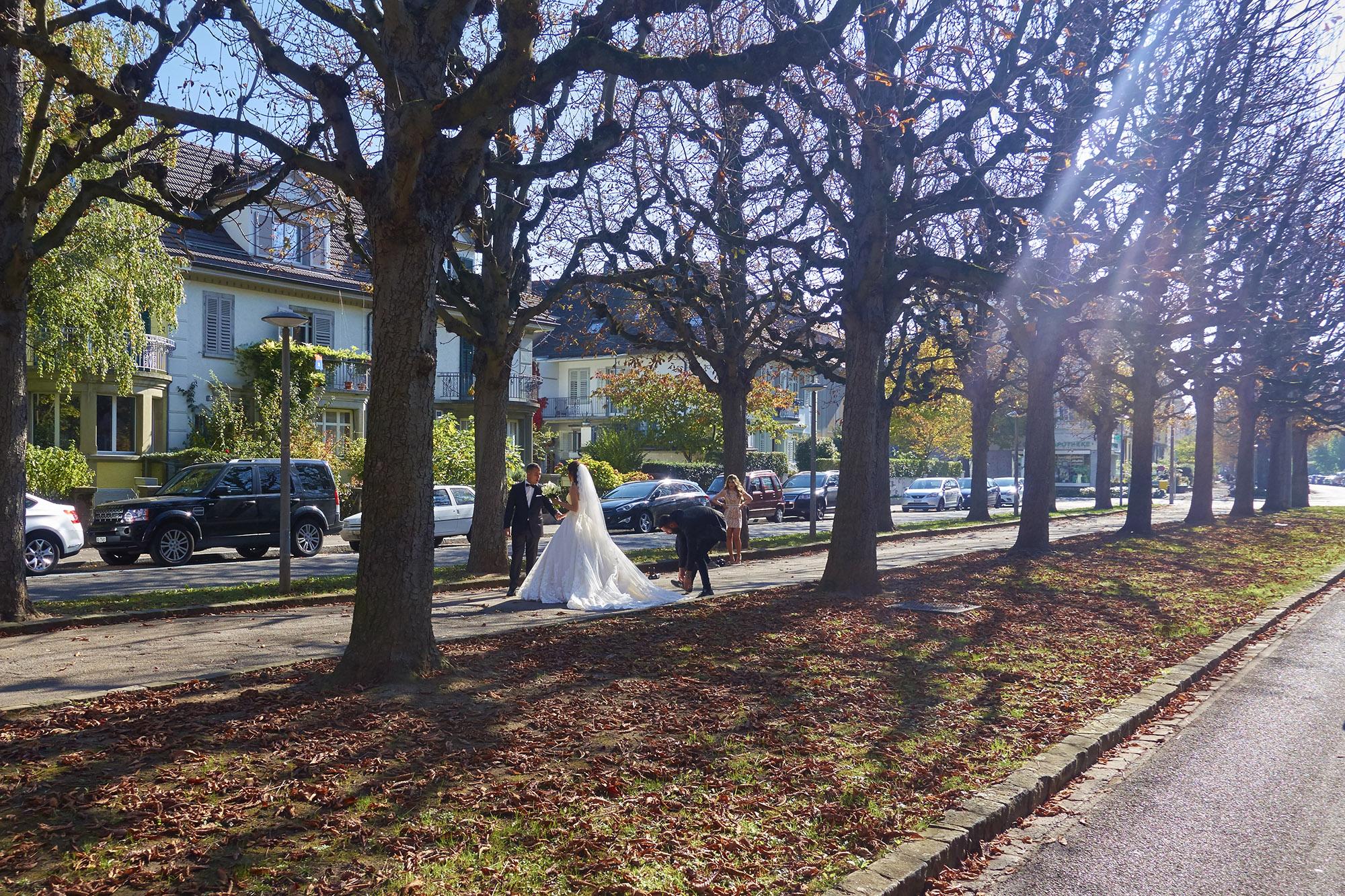 Als romantische Kulisse sind Bäume beliebt, aber der Wirtschaftlichkeit stehen sie oft im Weg.