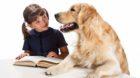 Ein Hund kann ein guter Zuhörer sein.