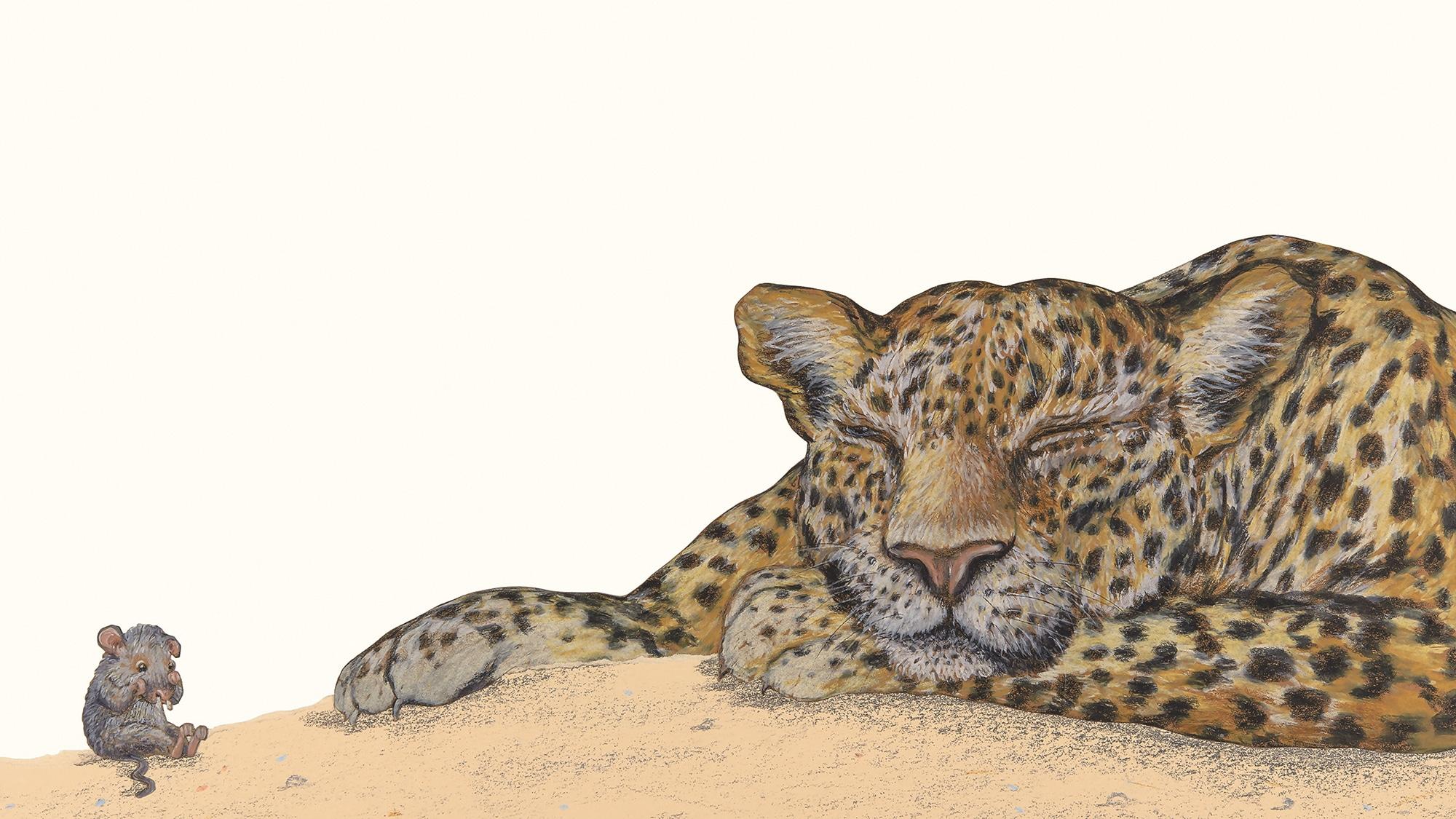 Eine weinende Maus und ein schlafender Leopard: Der Anfang einer Freundschaft zwischen Rigo und Rosa.