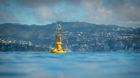 Pegelmessungen als Indikatoren für den Klimawandel: Messboje im Hafen von Wellington in Neuseeland.