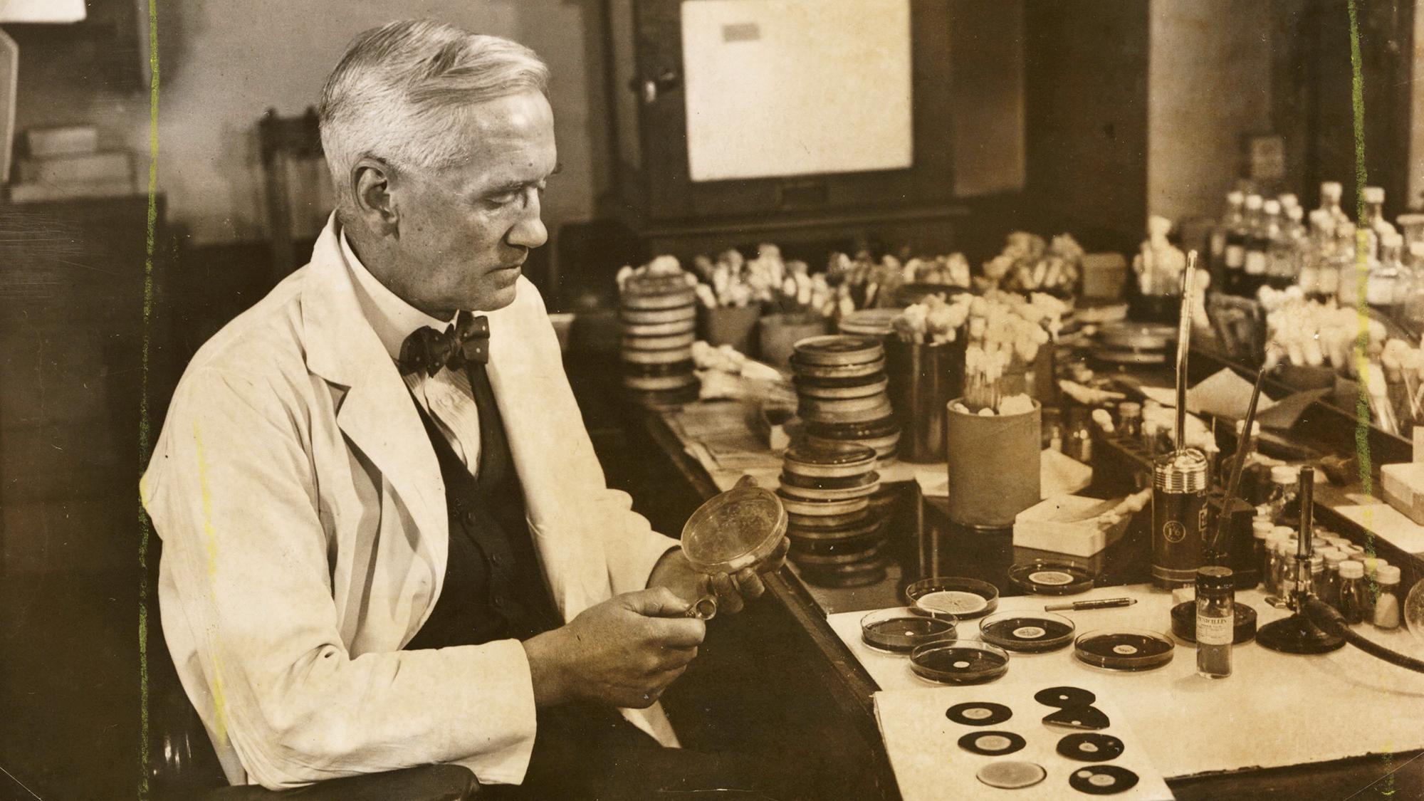 UNITED KINGDOM - JUNE 02:  Professor Fleming working in his laboratory, 1943. A photograph of Professor Alexander Fleming [18