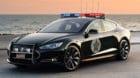 Feuchter Traum? Die Polizei von Los Angeles hat 2016 auf Teslas des Modells S setzen wollen, hat es sich dann aber wegen der