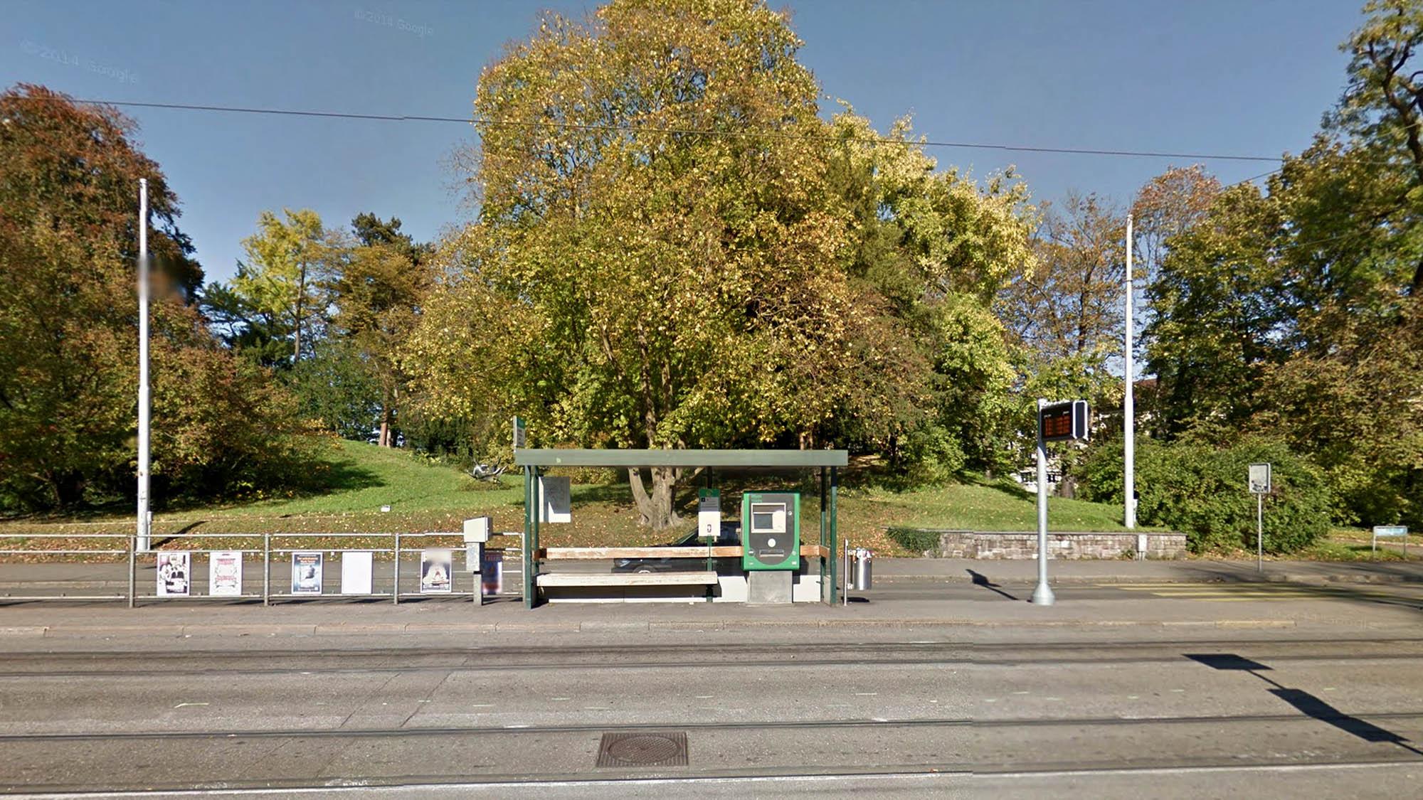 Ginge es nach den bürgerlichen Grossräten, müsste der stolze Baum bei der Tramhaltestelle St. Alban-Tor gefällt werden.