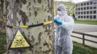 Zum Glück nur Greenpeace: Aktion gegen Giftmüll im Boden beim Ackermätteli im Klybeck.