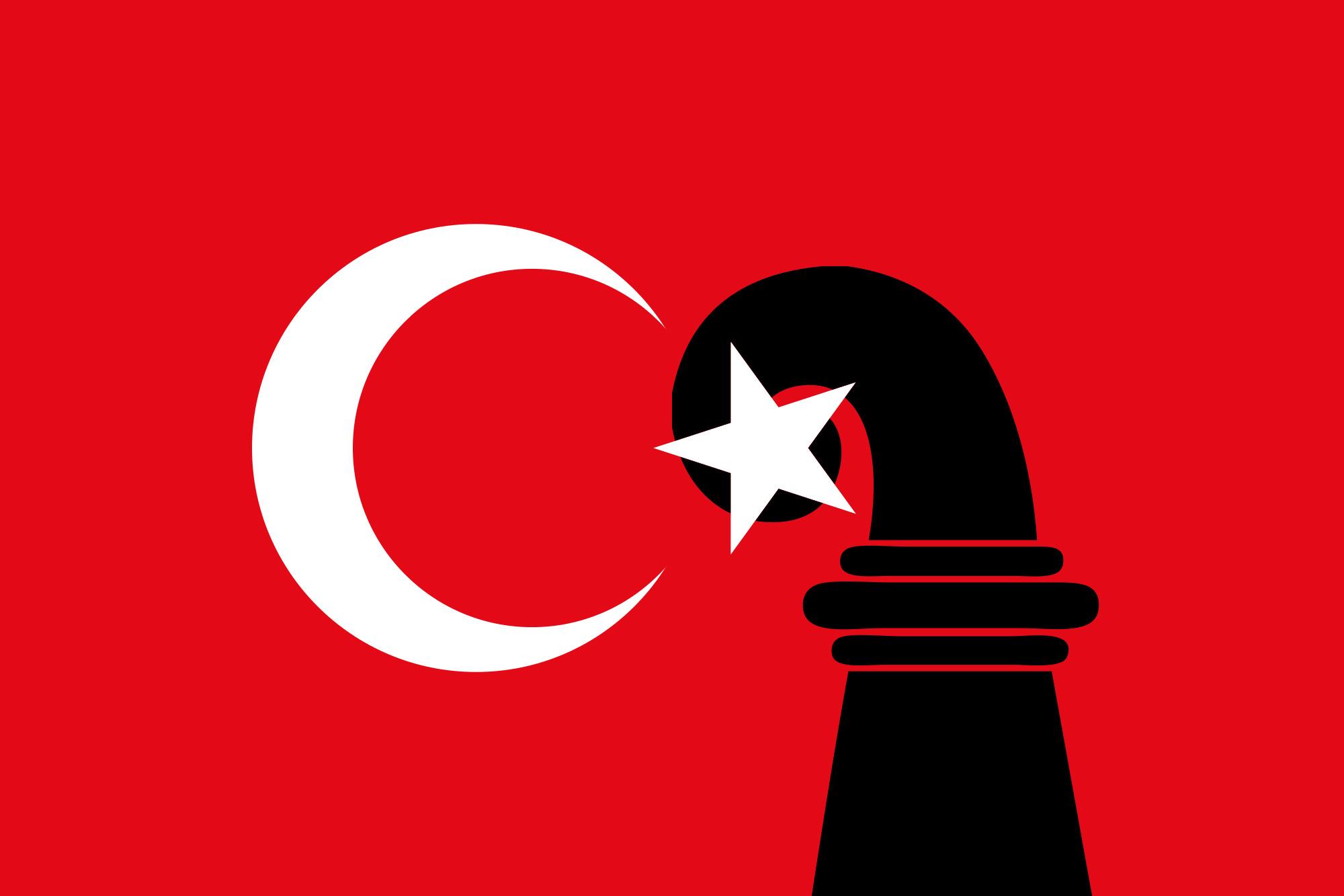 Nationalistische Basler Türken sind irritiert: Warum stellt sich Erdogans Lobbygruppe gegen sie?