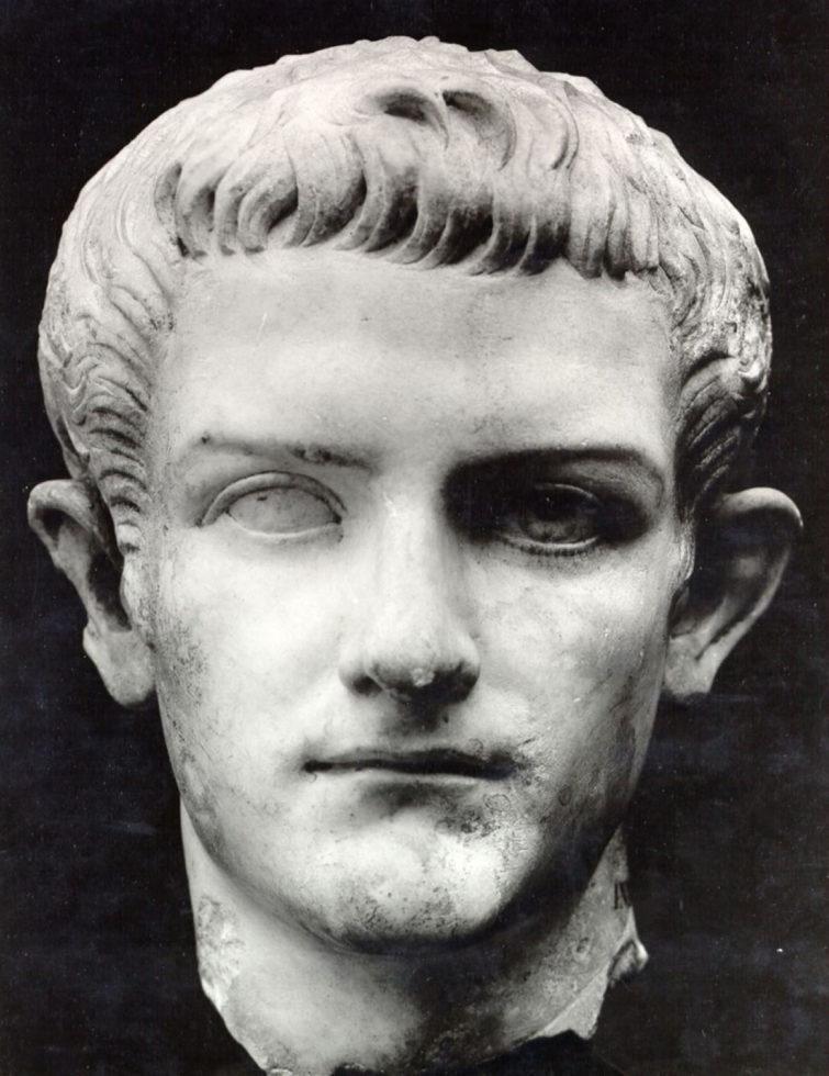 Caligula Pferd