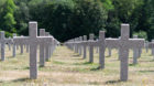 Ein Meer aus Kreuzen: Der französische Friedhof auf dem Hartmannswillerkopf.