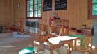 Lauschiges Klassenzimmer: Die Privatschule «D'Schuel» auf dem Bruderholz ist im diesem Jahr gestartet.