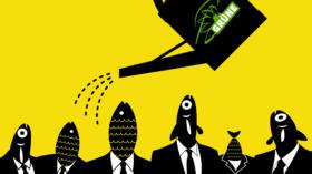 Die Fische leiden, die Grünen schwimmen in Umfragen obenauf – einen direkten Zusammenhang haben die beiden Dinge allerding